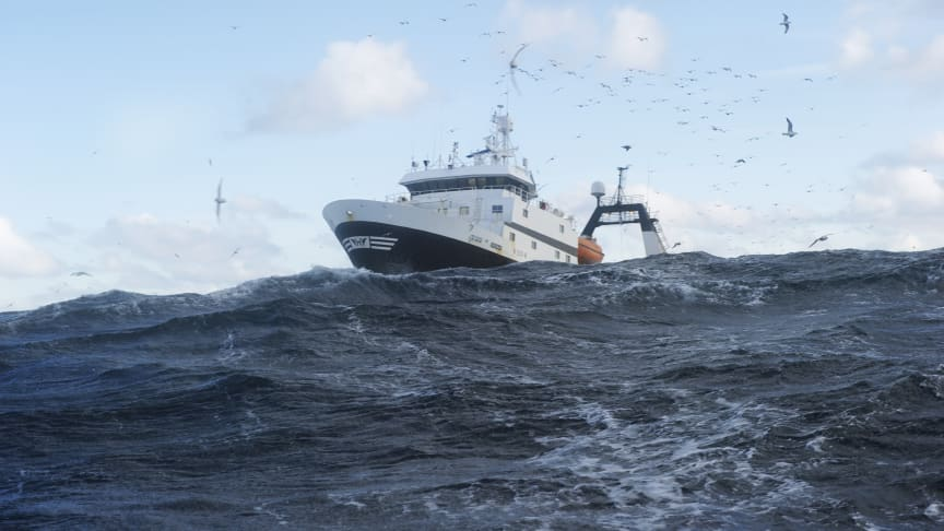 So far this year, Norway has exported 59,000 tonnes of frozen cod including the fillet worth a total of NOK 1.9 billion.