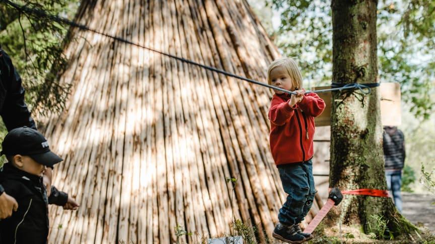 Under tre veckor i sommar blir det lovaktiviteter i Skogsmulleriket på Billingen. Foto: Gustaf Elias/Next Skövde