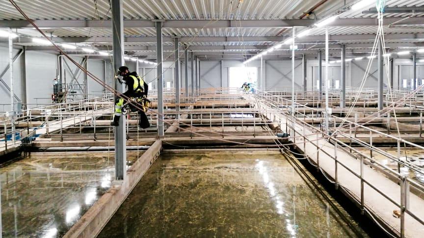 Rostskyddsmålning av balkkonstruktion.