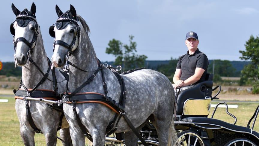 Från fyrspann till par. Axel Olin debuterar internationellt i helgen med sina nya parhästar. Foto: Karolina Swärd