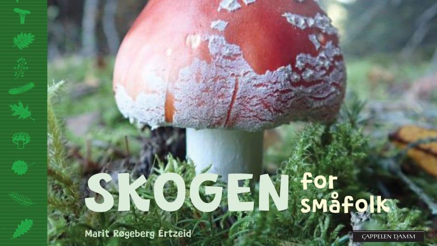 """""""Skogen for småfolk"""" er er den fjerde boken i Marit Røgeberg Ertzeids serie med naturhåndbøker for de yngste."""