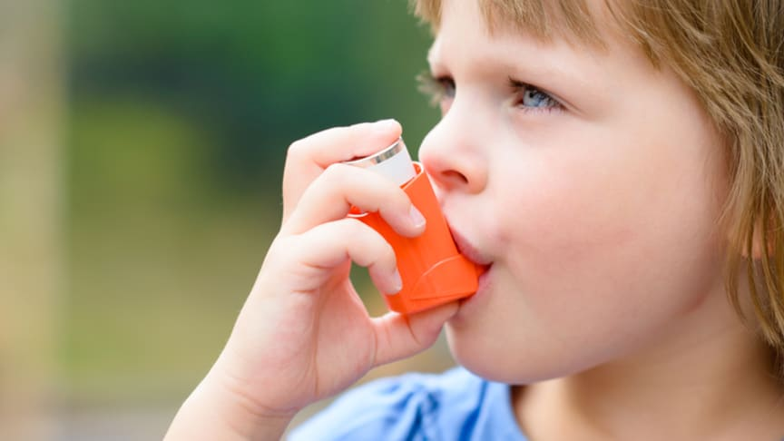 A young girl uses an asthma inhaler. A survey by the International Study of Asthma and Allergies in Childhood (ISAAC)  found that about 14% of the world's children were likely to have had asthmatic symptoms.