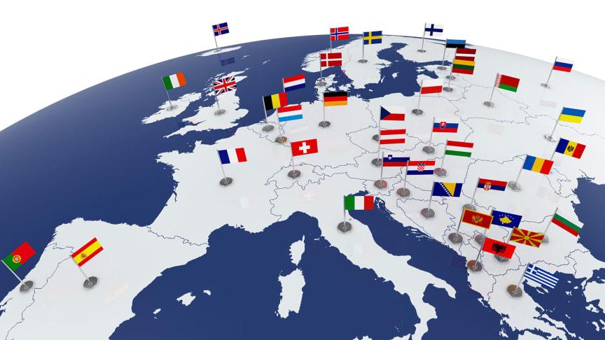 """Im Mai und Juni 2021 begab sich das Präsidium der TH Wildau im Rahmen der """"European Neighbours Initiative"""" (ENI) auf """"virtuelle Europareise"""" und traf sich digital mit den Hochschulleitungen von sechs Partnerhochschulen aus Deutschlands Nachbarländern"""