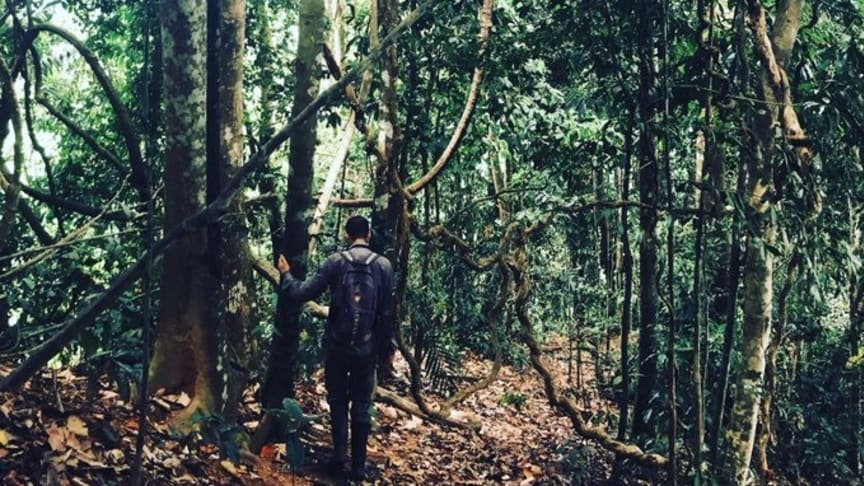 Conducting a Forest Integrity Assessment in Malaysian Borneo (credit Andy Suggitt)