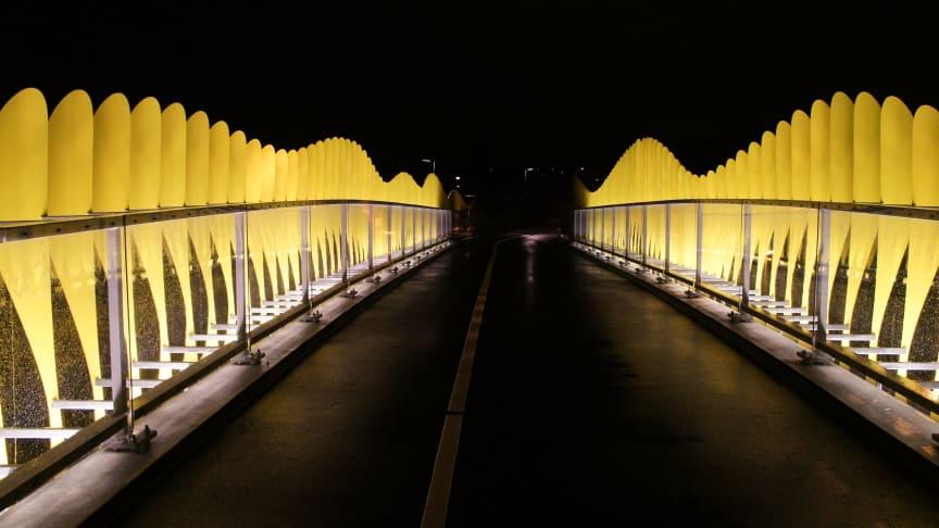 Malmö Stad valde vandalbelysning till brobygge!