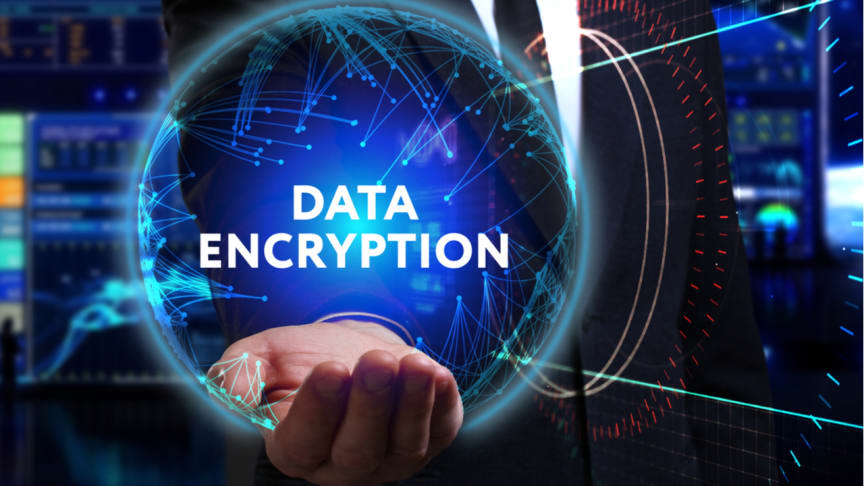 Inge Bryan: Strong encryption indispensable for our security