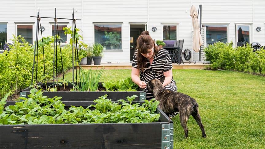 BoKlok har Sveriges nöjdaste bostadskunder – för tredje gången på fem år