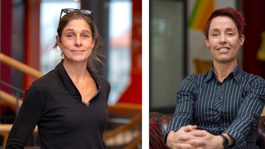 Christine Mulder och Anna-Karin Pernestig, Högskolan i Skövde.