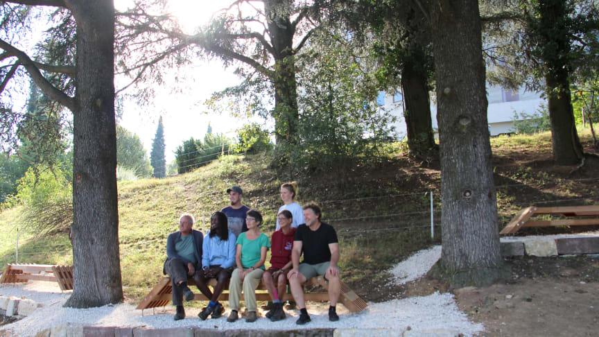 Verweilen bei den Zedern: Mitarbeitende der Goetheanum-Gärtnerei bei der neuen Dreiergruppe (Foto: Sebastian Jüngel)