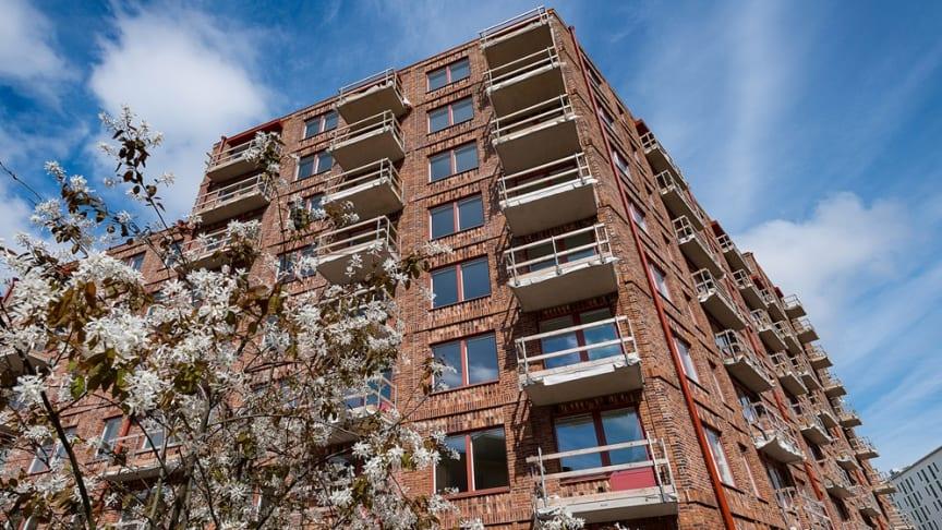 Bild: DP-bild. Projektet Docenten, Stockholms Kooperativa Bostadsförening.