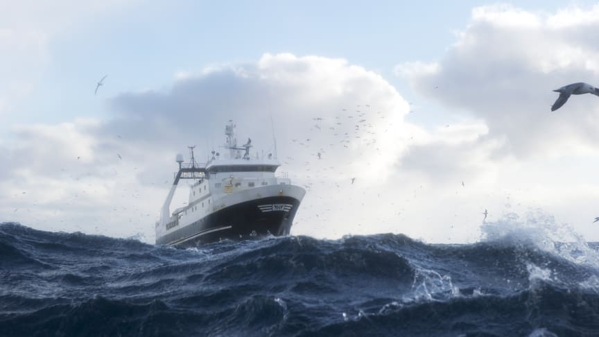 Norwegian Seafood Exports Reduced In February