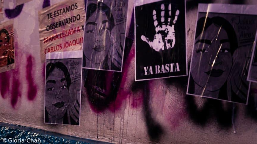 Mexiko - myndigheter har använt våldsamma metoder för att tysta kvinnor som protesterat mot könsbaserat våld
