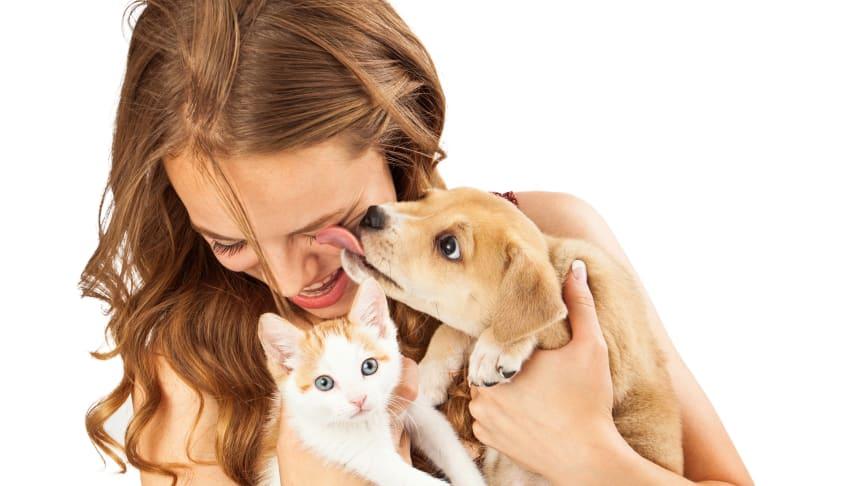 Das Miteinander von Mensch und Tier ist nicht immer harmonisch: Es kommt immer wieder zu Bisswunden. Damit diese sich nicht gefährlich entzünden, sollten sie möglichst schnell desinfiziert und anschließend weiter versorgt werden.
