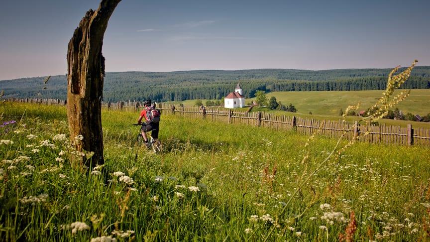 Radregion Erzgebirge (Foto Tourismusverband Erzgebirge e.V./René Gaens)