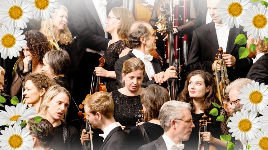 Gothenburg Symphony Orchestra celebrating the Swedish National Day, 6 June at 2PM CET.