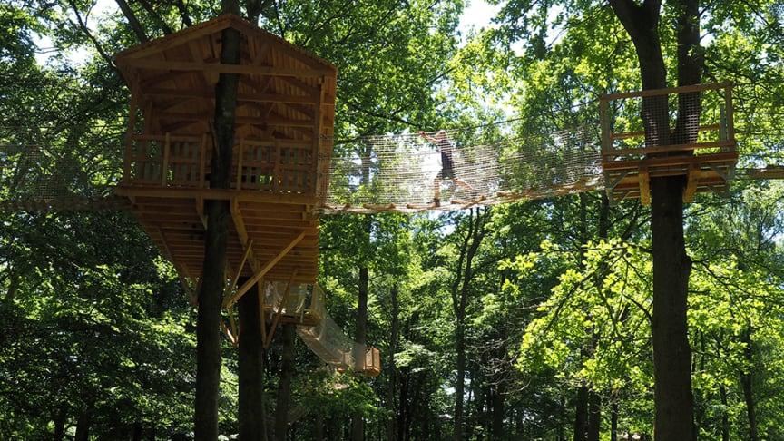 Skånes Djurpark sätter ett tak för antal gäster och sänker priset på ett begränsat antal biljetter under högsäsongen.