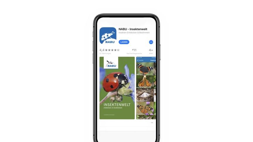 Mit der App Insektenwelt, die der NABU mit Unterstützung von dm entwickelt hat, können mehr als 120 Insektenarten erkannt werden