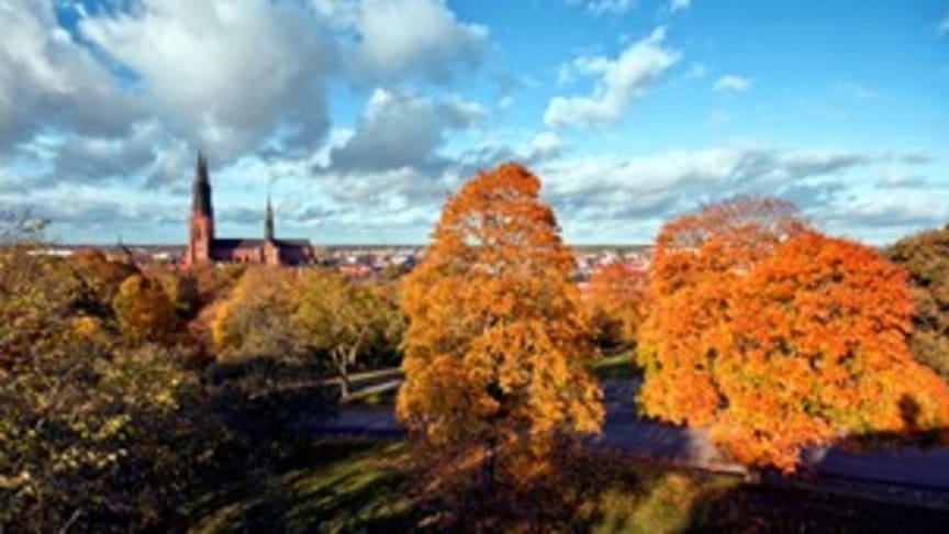 Tryggare Sverige inleder samarbete med Uppsala universitet kring offentlig-privat platssamverkan