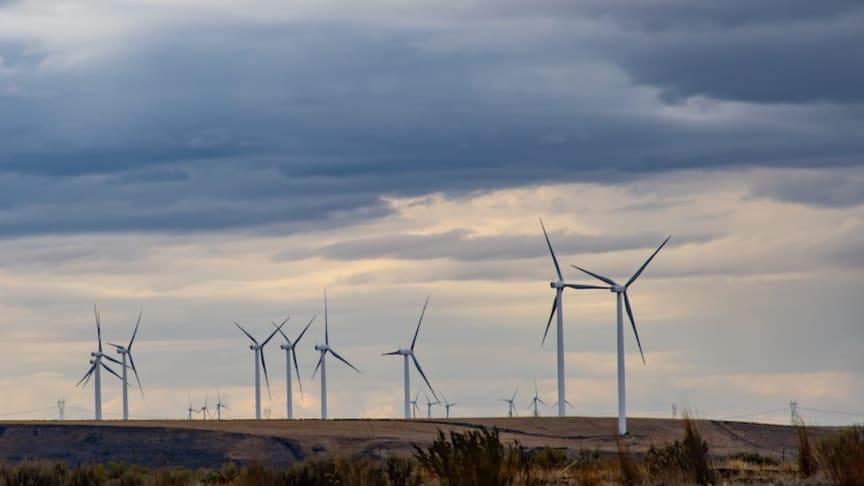 Vindkraftsrekord gav lägre elpris