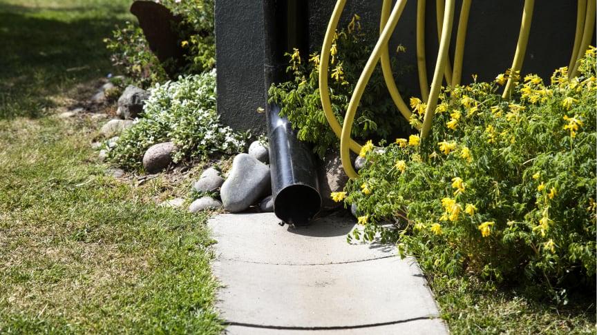 En ränna som leder vattnet från stupröret bort från huset är en enkel åtgärd