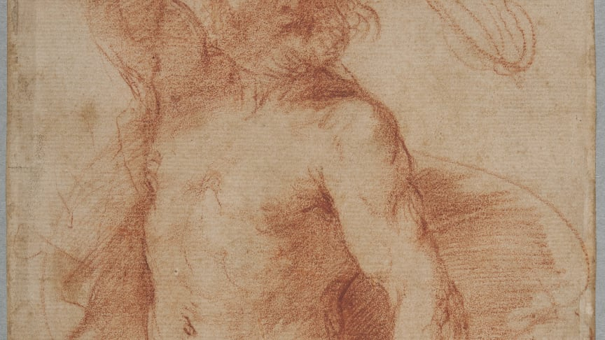 Giovanni Francesco Barbieri, called Guercino, Study for a Hercules in three-quarter-length, beginning of the 1640s. Photo: Cecilia Heisser/Nationalmuseum.
