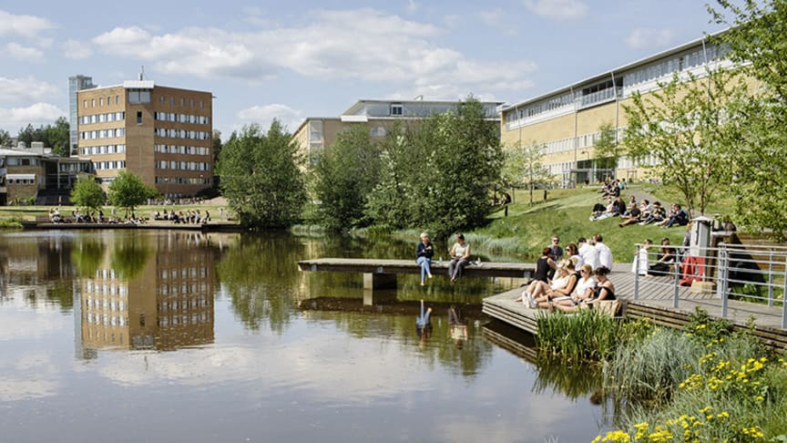 Många studenter söker sig till Umeå universitet. Foto: Elin Berge