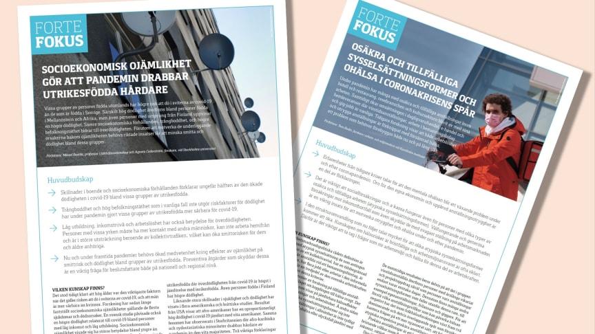 Nya Forte Fokus om pandemin: Ojämlik dödlighet samt osäkra arbeten