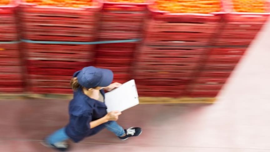 Digitala tjänster förenklar för företag i livsmedelskedjan