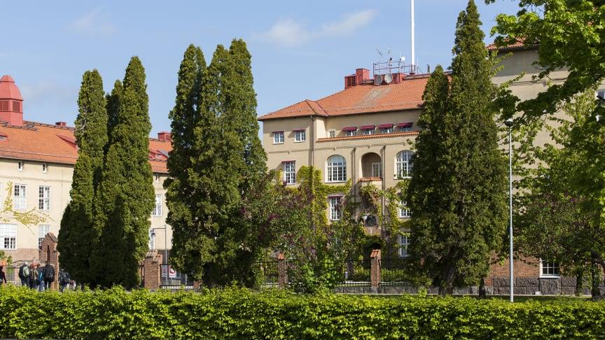 Om studenterna ansöker och antas tidigare finns det god tid för att planera och prata med arbetsgivaren, menar Eva-Lena Einberg på Högskolan Kristianstad.