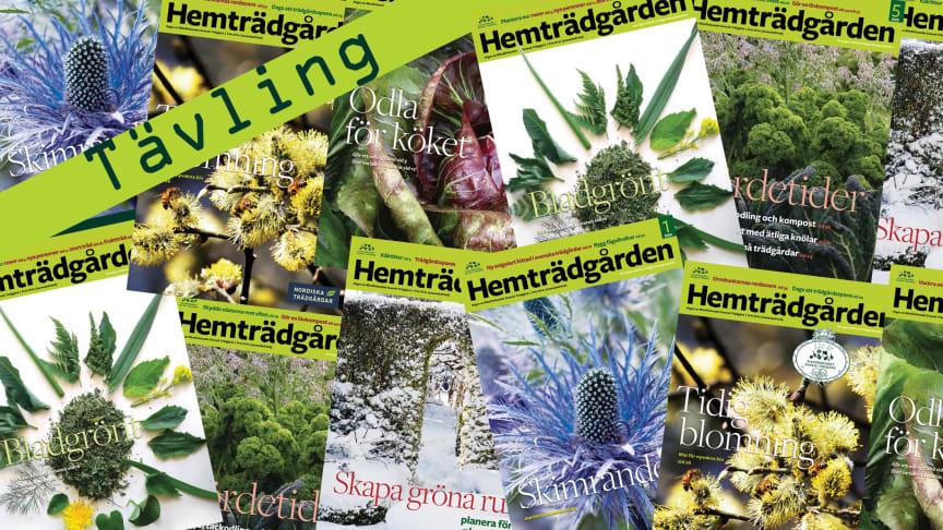 Samtliga omslag på Hemträdgården under jubileumsåret 2020