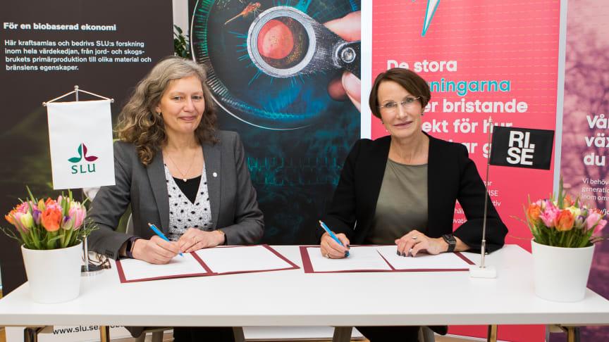 Maria Knutson Wedel, rektor SLU och Pia Sandvik, VD RISE signerar samarbetsavtalet. Foto Jenny Svennås-Gillner.