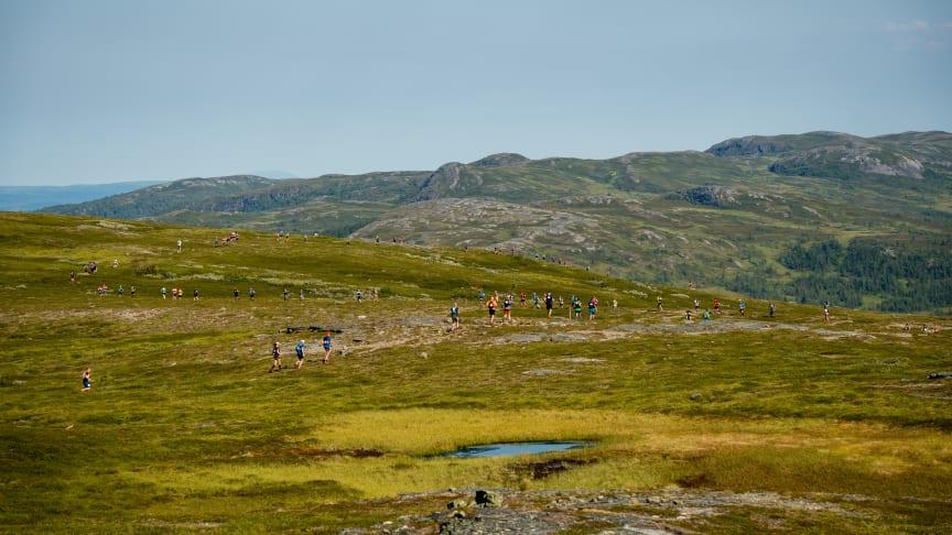 Salomon 27K, det inledande loppet under KIA Fjällmaraton Årefjällen, avgjordes i strålande väder som bjöd deltagarna på mäktiga vyer.