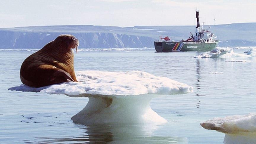US gauges Alaska offshore interest