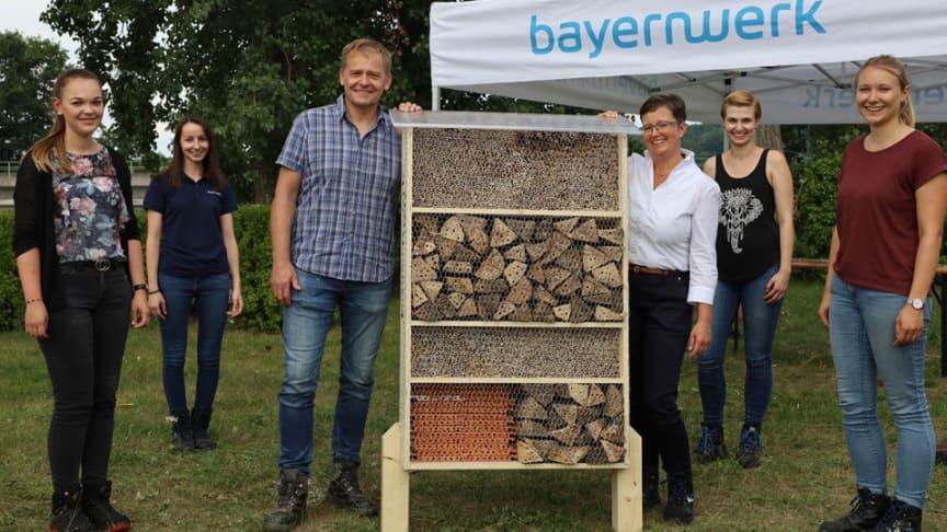 Beim Aktionstag zum Bau von Bienenhotels setzen sich Trainees und Führungskräfte des Bayernwerks für Arten- und Umweltschutz ein.