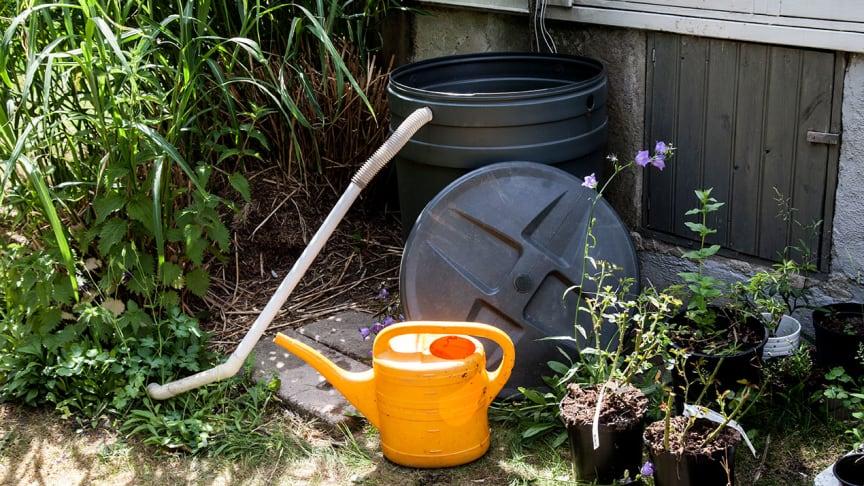 En regnvattentunna som samlar vattnet från taket är en smart lösning.