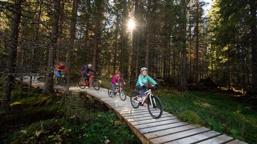 Familien fra Stange liker seg veldig godt på sykkelstiene i Trysil. Foto: Jonas Hasselgren
