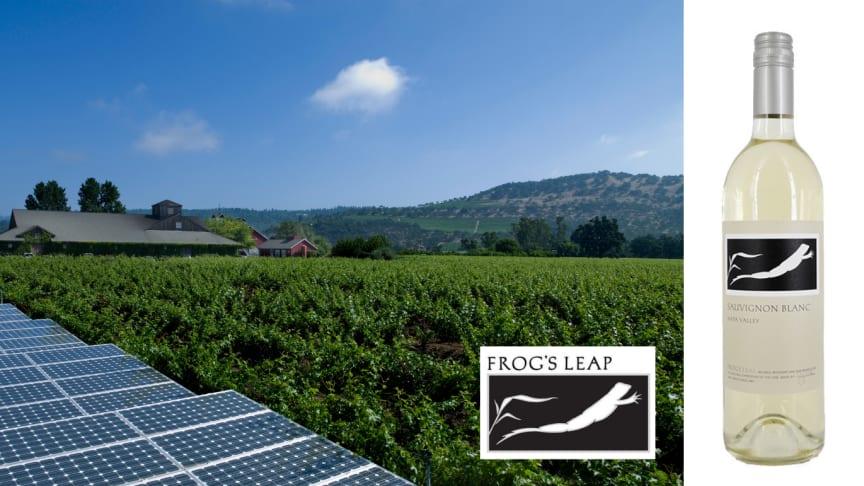 Exklusiv lansering - Frog's Leap Sauvignon Blanc 2019
