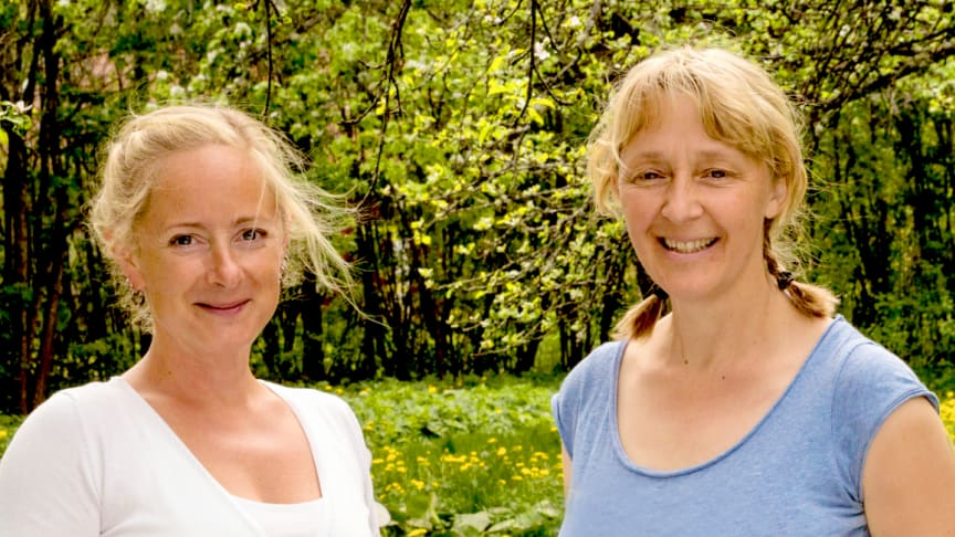 Lotta Fabricius Kristiansen, biodlare och sakkunnig inom pollinering, örtterapeuten och journalisten Alexandra De Paoli. Foto: Apinordica.
