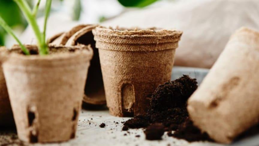 Plantagen lanseeraa maatuvat muovittomat istutusruukut