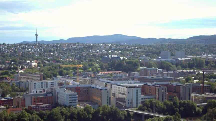 Multiconsult og LINK arkitektur har inngått landsomfattende rammeavtaler med sykehus-Norge. Her St. Olavs hospital i Trondheim. Foto: Cato Edvardsen/Wikipedia.