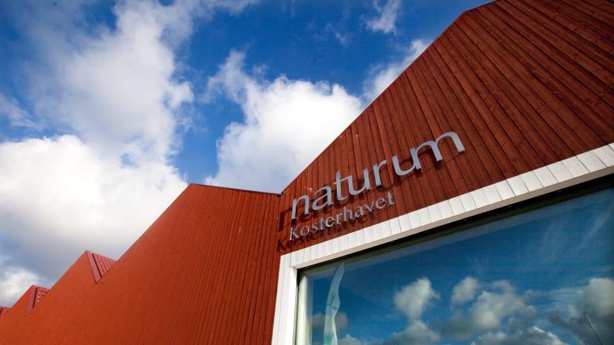 Naturum Kosterhavet. Foto: Åsa Dahlgren