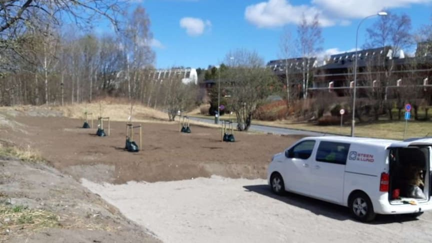 Ved krysset øverst i Tokeruddalen kommer det nå plen og nye trær