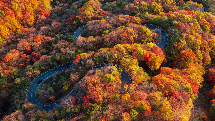 Irohazaka Road in Nikko is a must visit for cyclists