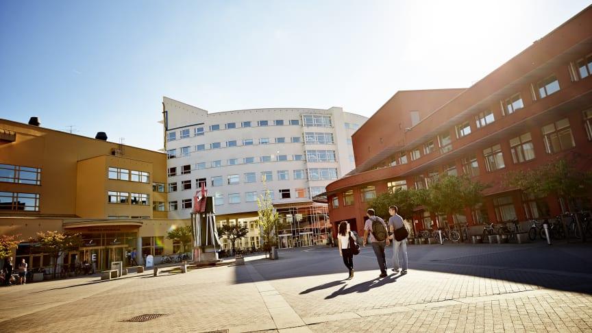 De sju yrkeshögskoleutbildningarna, varav tre är helt nya på JU, startar i höst.