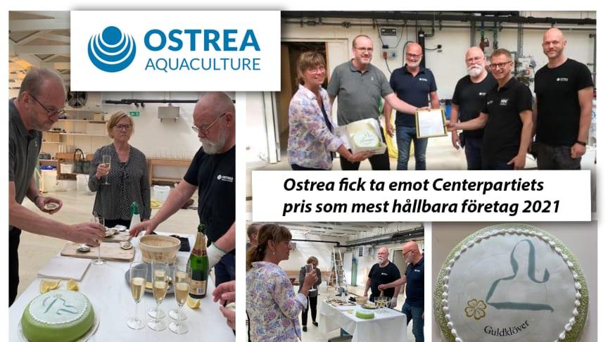 Gratulationer till Ostrea som fick pris som mest hållbara företag 2021!