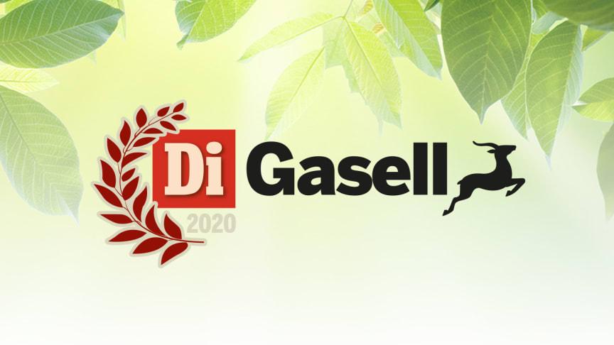 EWF ECO blir en av årets Gaseller 2020
