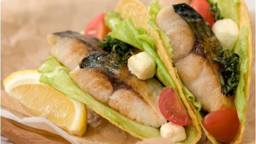 Spennende oppskrift på makrelltaco bidro til at Sjømatrådet vant prestisjefull reklampris i Japan. FOTO Norges sjømatråd