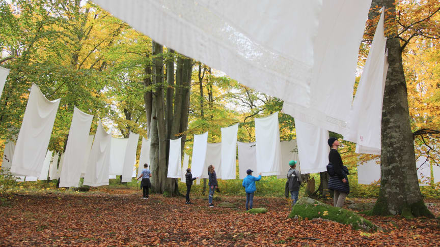 Wanås Konst får 400 000 kronor för projektet Livräddare – Wanås Konst litteratur. Bilden visar konstverket A Laundry Field av Kimsooja. Foto: Mattias Givell