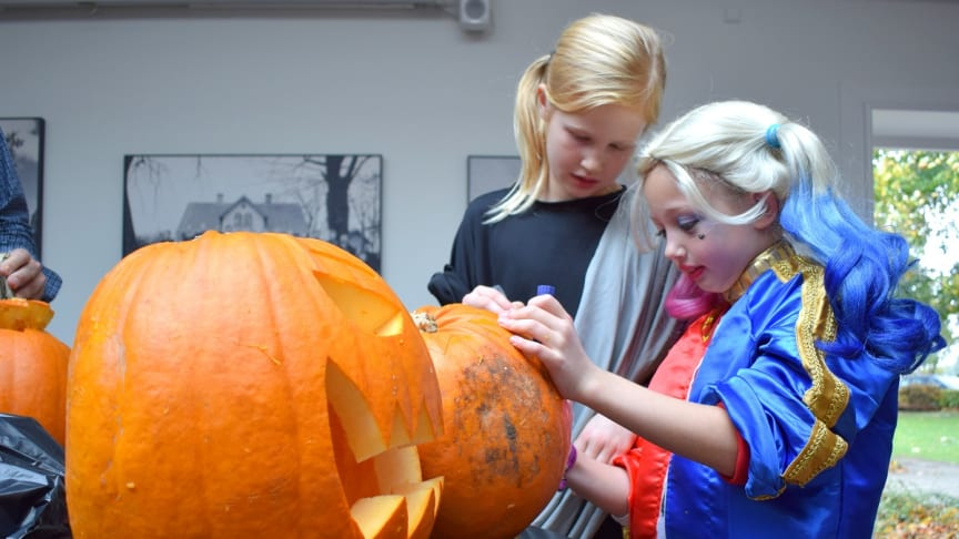 Halloween 27. oktober kl. 12-15 og kl. 17-20