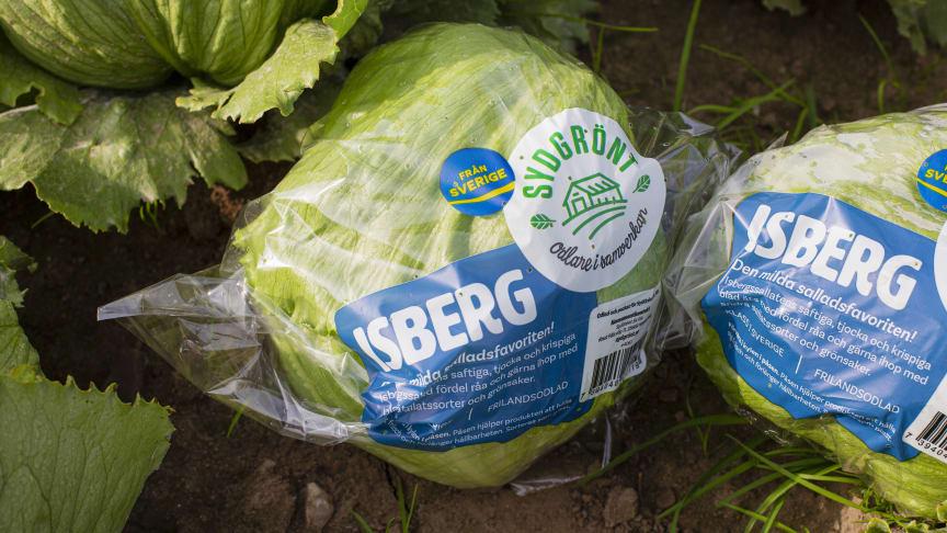 SydGrönt odlar svenska grönsaker, frukter och bär och märker med Från Sverige-märkningen